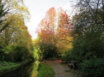 New River Walk